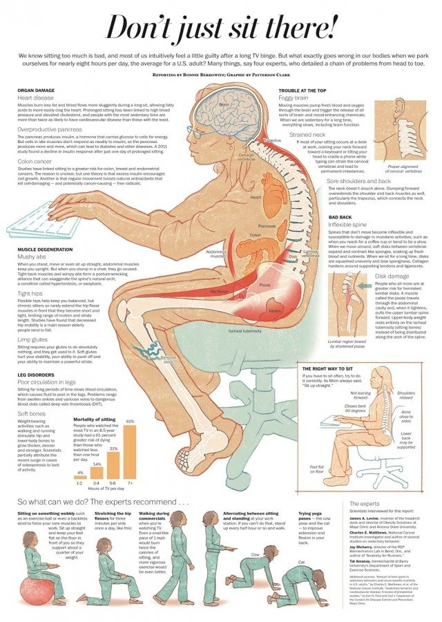scientists body sitting hours