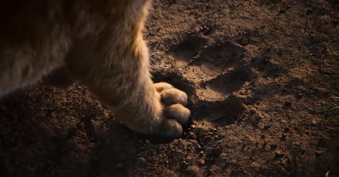 Lion King 1994 & Lion King 2019 : An Amazing Comparison