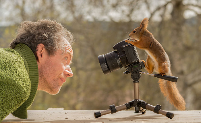Photographer Followed Squirells For 6 Years And Here Are The Best Of His Pictures