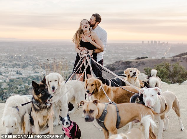 "Most Epic Proposal Ever That Included Dogs Jumping Around When The Girl Said ""Yes"""