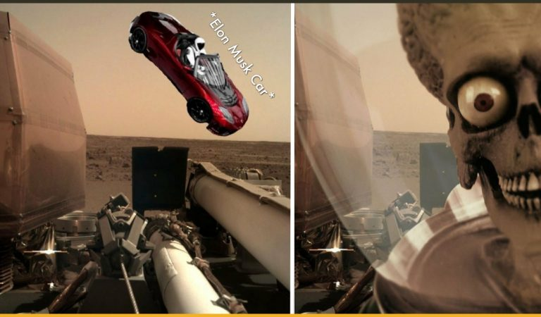 15+ Funny Reactions To NASA's InSight's First Photos From Mars