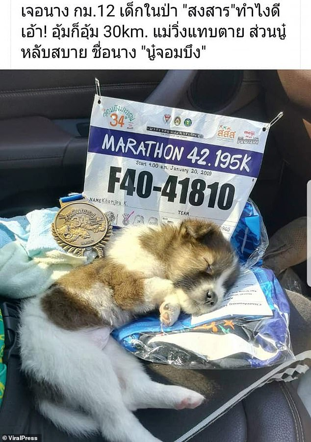 Marathon Competitor Runs 19 Miles Carrying A Puppy