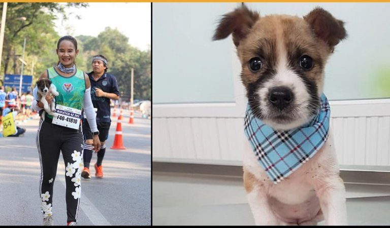 A Marathon Competitor Runs 19 Miles Carrying A Puppy After Realizing It's Lost