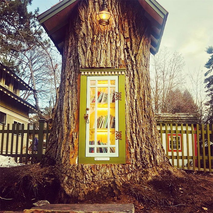 Woman Turns 110-Year-Old Tree Into A Free Little Library For The Neighbourhood And It Looks Amazing