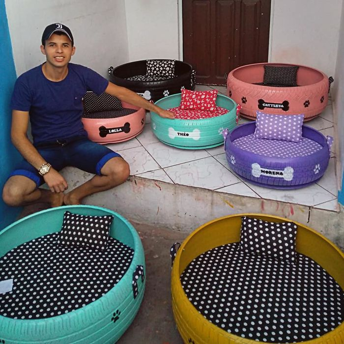 Artist Creates Beds For Animals Out Of Old Tires