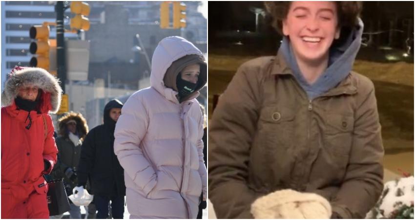 frozen har, cold
