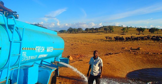 Here Is Kenya's Water Man Who Travels Miles Daily To Save animals From Thirst Providing Them Truckloads Of Water