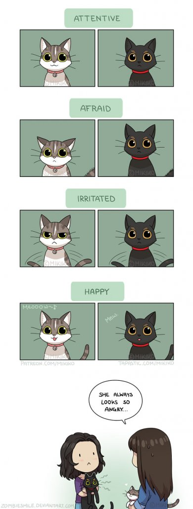 Artist Depicts Her Everyday Life With Her Boyfriend And Cat Through Beautiful Illustrations