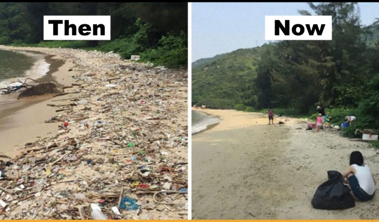 The Latest Viral Trashtag Challenge Urges People Worldwide To Pick up Trash