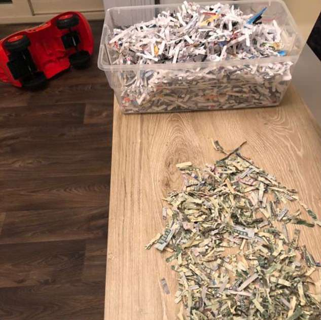 2 year old kid shredded parent's yearly saving of $1000