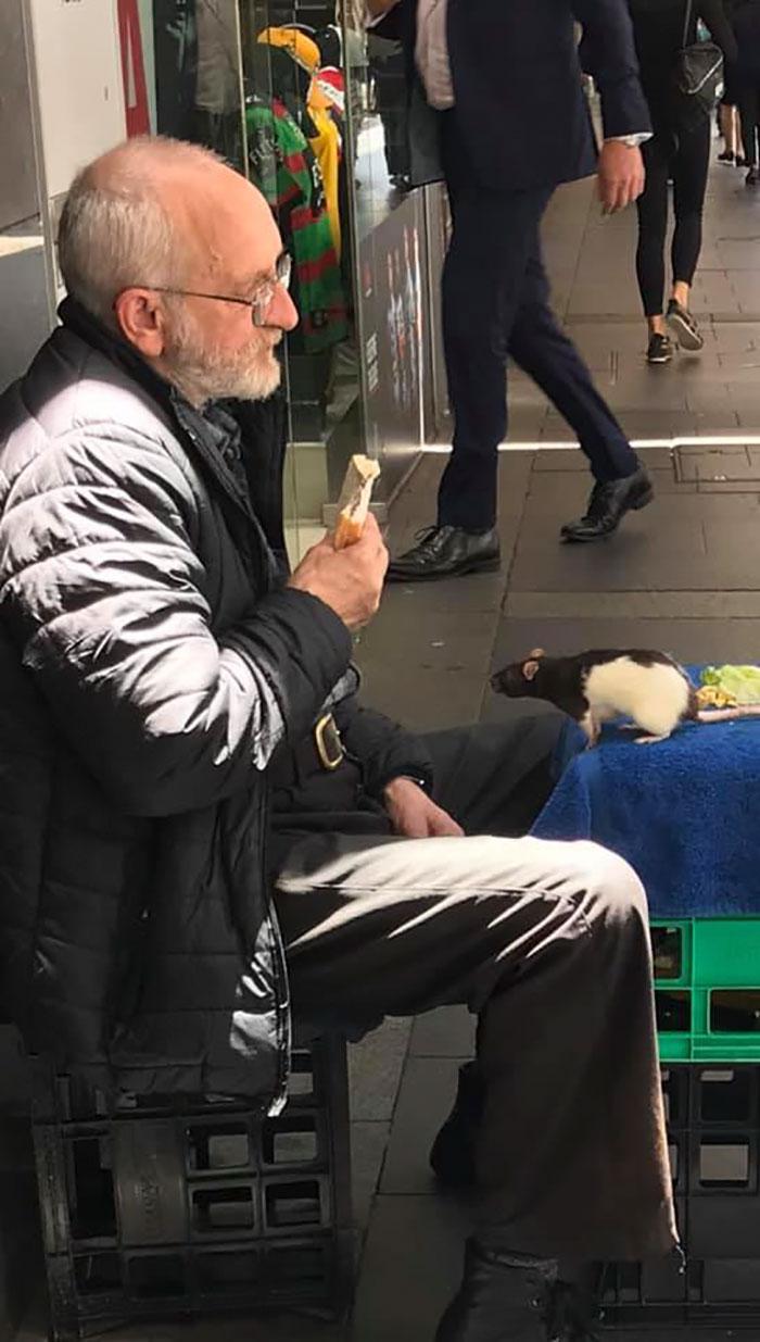 Homeless Man Seeks Help To Find His Stolen Beloved Rat