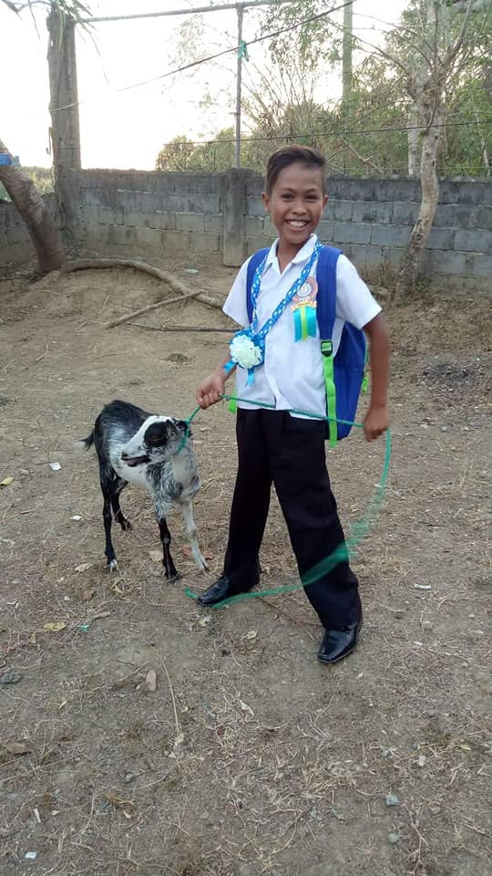 Little boy asks for goat as graduation gift