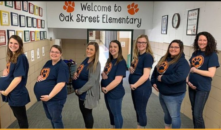 Seven Teachers At The Elementary School Became Pregnant At The Same Time