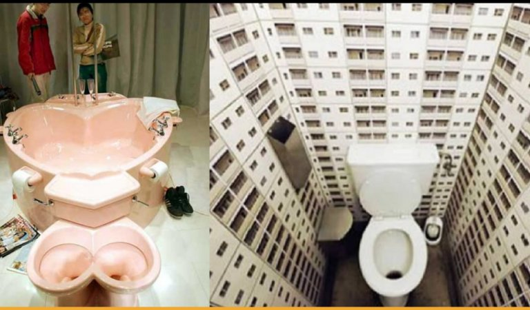 Most Weird Toilet Improvisations Not Everyone Can Think Of
