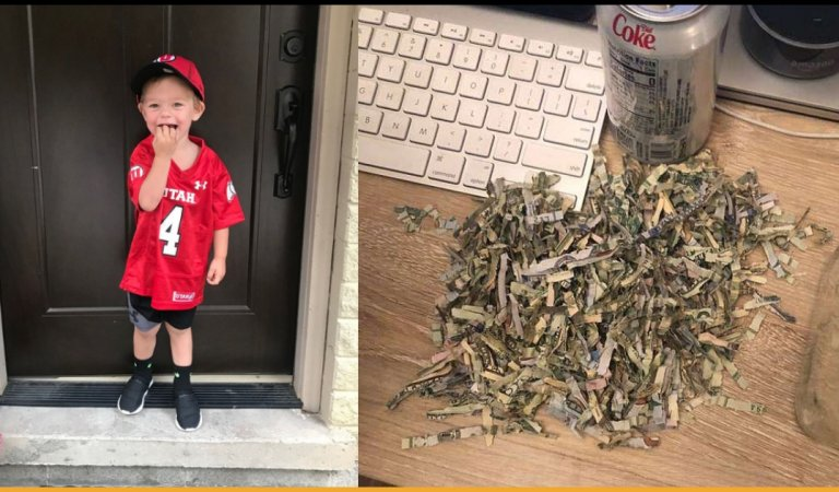 2-year-old Kid Destroyed Parent's Yearly Saving of $1000 Through A Shredder