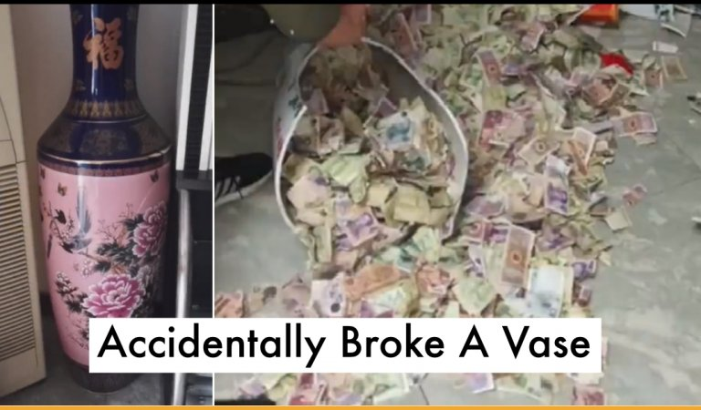 Girl Accidentally Broke A Vase At Home, Reveals Father's Secret Saving Of 13 Years