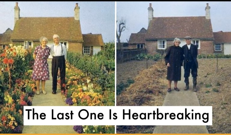 Elderly Couple Takes Picture Every Season In Their Garden, But The Last One Is Heartbreaking