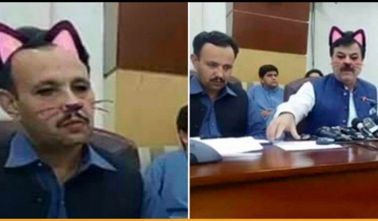 Pakistani Officials Accidentally Left The Cat Filter On During Live Session, Hilarious Video Went Viral