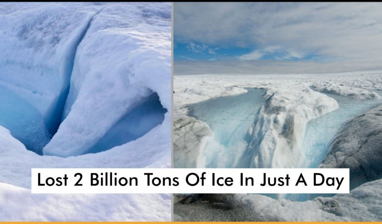 Greenland Drastically Lost 2 Billion Tons Of Ice In Just A Day And It's Really Scaring