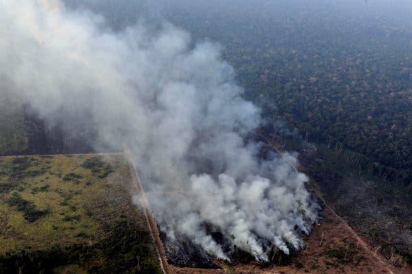 Fire In Amazon Rainforest Indigenous Brazilian Woman Delivers Heartbreaking Message