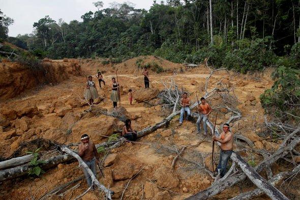 Leonardo DiCaprio's Earth Alliances pledges $5 million for amazon rainforest