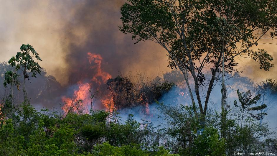 Fire in Amazon Rainforest Brazil