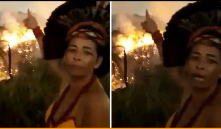Indigenous Brazilian Woman Delivers Heartbreaking Message As Fire Rages In Amazon Rainforest