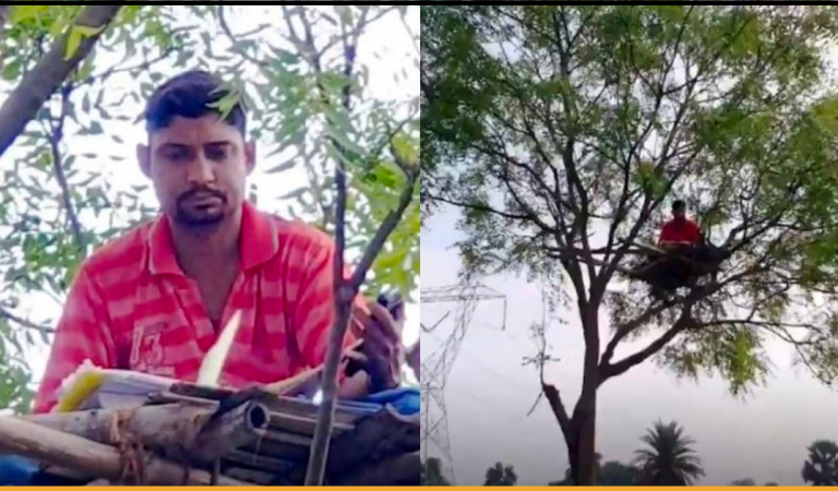 Teacher Climbs Tree For Better Internet Connectivity To Teach His Students Online