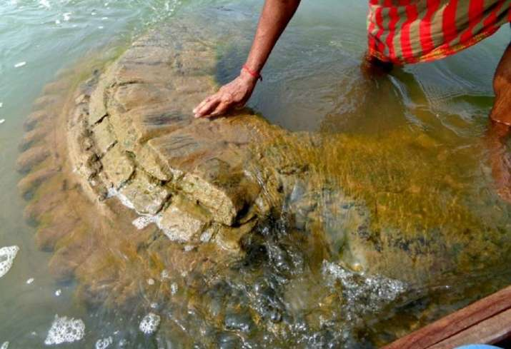500-Year-Old Temple Resurfaced in River That Sumerged in the 19th Century in India