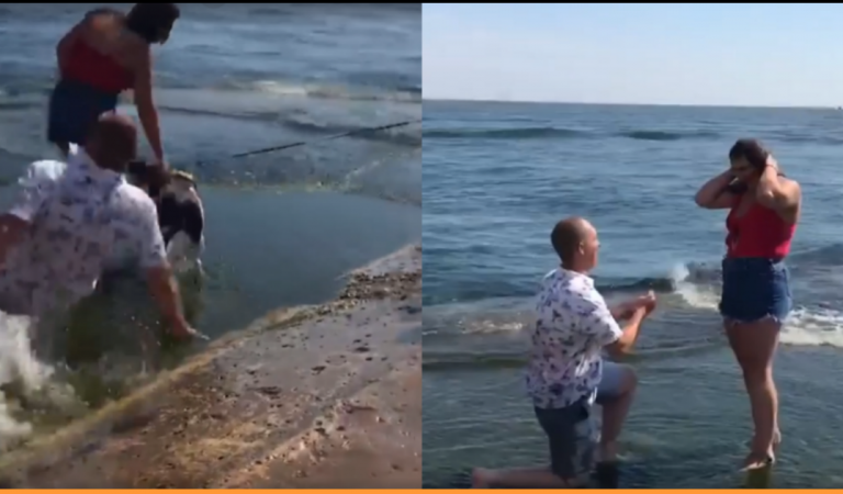 'Falling' In Love: Man Slips and Falls On The Beach Right Before Proposing His Girlfriend